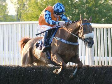 Jumps racing in North Nottinghamshire