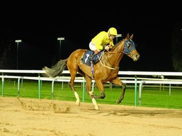 Mister Chiang winning under the lights
